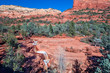 Seven Sacred Pools Sedona Arizona - 72117322