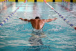 Swimmer in the swimming pool - 72117527
