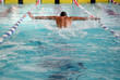 canvas print picture - Swimmer in the swimming pool