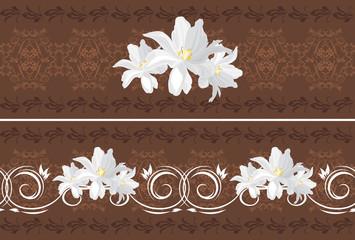 Ornamental dark brown borders with white tulips