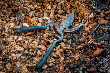Pruning shears on coconut coir fiber