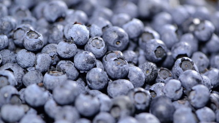 Blueberries (seamless loopable)