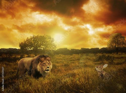 Fotobehang A caçada