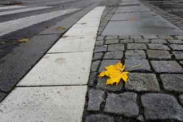 Urban fall