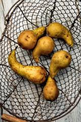 Pears in Basket