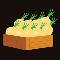 yellow onion in a wooden crate. vector illustration