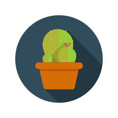 Cactus Flat Design Concept Icon Vector Illustration With Long Sh