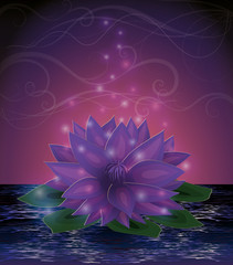 Magic lotus flower card, vector illustration