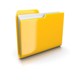 Yellow Document Folder