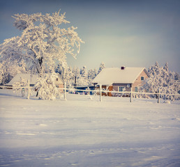Winter sunny morning in the Carpathian village.
