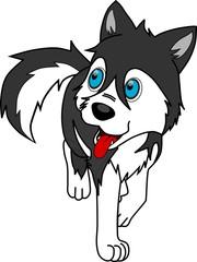 Perrito husky
