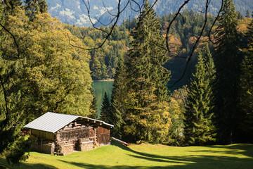 Hütte aus Holz auf einer grünen Wiese im Allgäu
