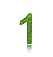The Number of one green grass isolated