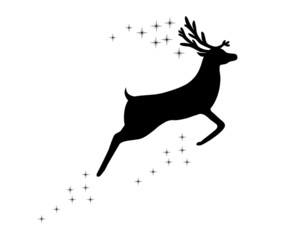Reindeer with stars on white background