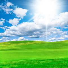 Green Grass Idyllic Landscape