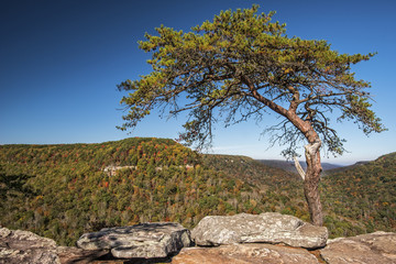 Buzzards Roost Over Look At Fall Creek Falls State Park