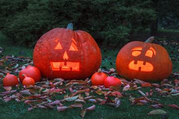 zwei Kürbisse zu Halloween