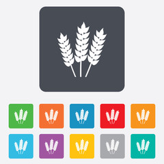 Agricultural sign icon. Gluten free or No gluten