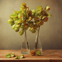 Vintage still life with autumn golden tree branches