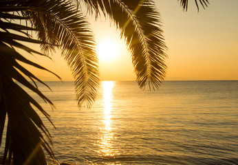 Tropical Island Sunrise