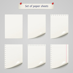Vector set of  paper sheet ,texture notebook sheets isolated