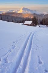 Ski track on snow.