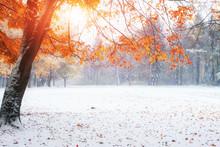 """Постер, картина, фотообои """"first days of winter"""""""