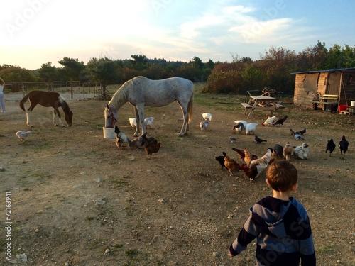 Poster Çocuk ve çiftlik