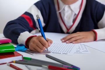 Schoolboy doing wordsearch