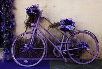 Lavanda in bici