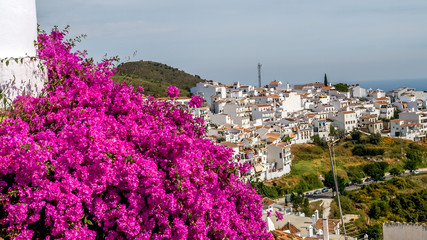 view of frigiliana, pueblo blanco, spain
