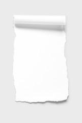 Blank paper scrap