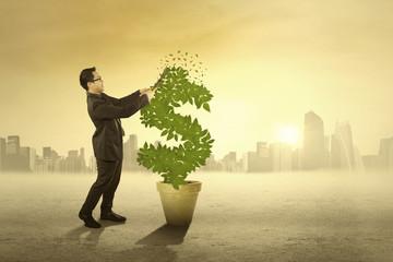 Businessman cutting money tree