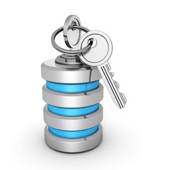 database icon with security lock keys