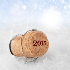 New Year's Champagne cork new year's 2015