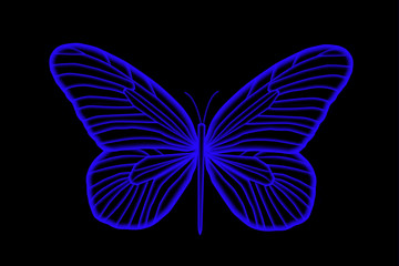 Florescent Colorful Blue Butterfly