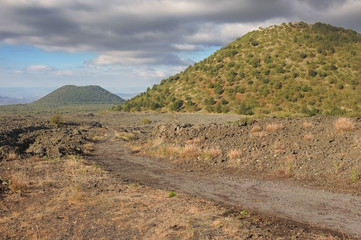 Old Volcanic Cones In The South-west Etna National Park, Sicily
