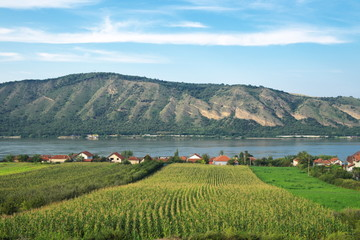 Cultivated Land Along Danube River Near Kladovo, Serbia
