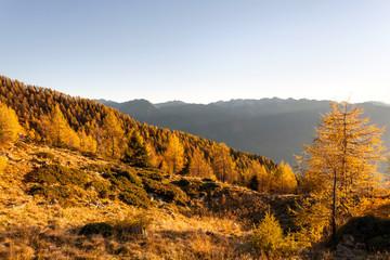 paesaggio alpino autunnale