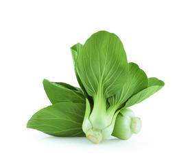 Baby Cos lettuce on White Backgroud