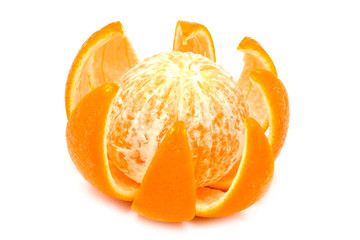 cut juicy orange