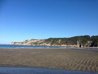Paisajista Asturias