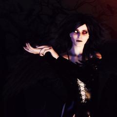 Dark Angel in the Forest