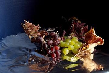 Uva e foglie