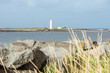 Popular spot with lighthouse in Reykjavik - Seltjarnarnes. - 72194183