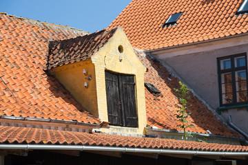 Dachtür