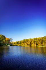 Pensive autumn pond.