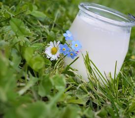 yaourt bio artisanal en pot en verre,vitalité,santé