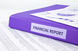 Financial accounting report with sale and purchase statement - 72197795