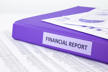 Financial accounting report with sale and purchase statement